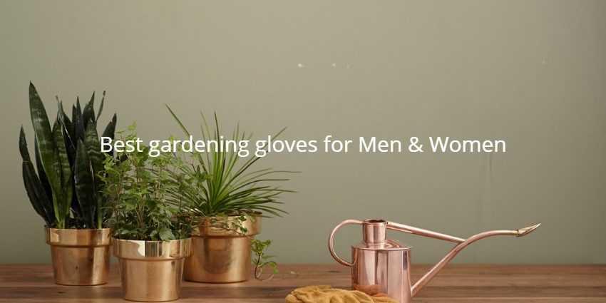 Best gardening gloves for Men and Women