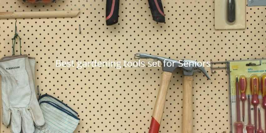 Best gardening tools set for Seniors