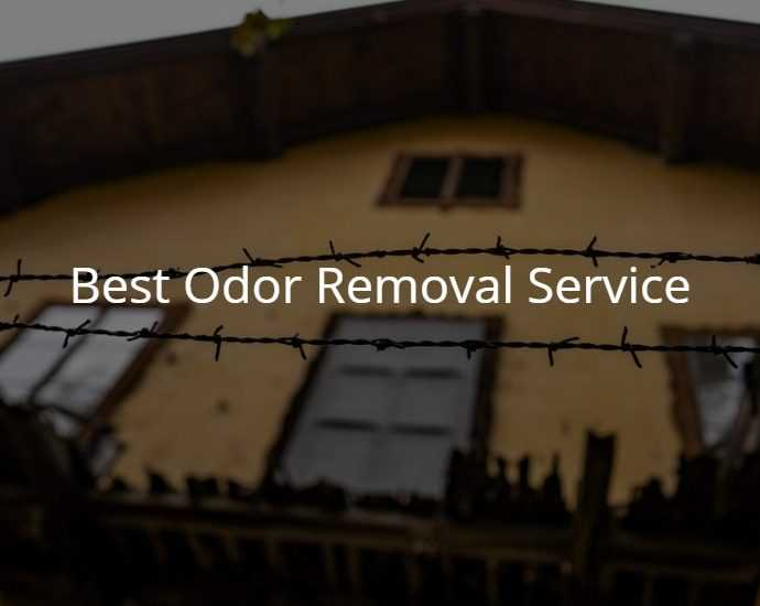 Best Odor Removal Service